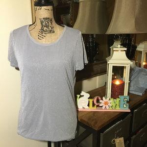 Ann Taylor Silver Short Sleeve Top